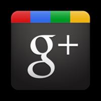 Berlogui en Google +